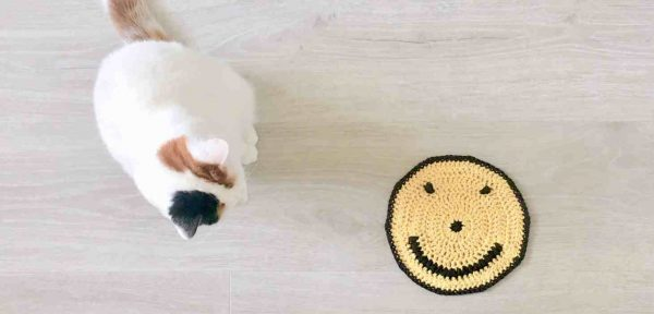 crochet smiley face washcloth with cat sitting next to it